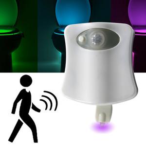 Bewegungs-Sensor-LED-Nachtlicht Badezimmer WC intelligente Lampe PIP 8 Farbe wasserdichtes WC Lampe 4.5V