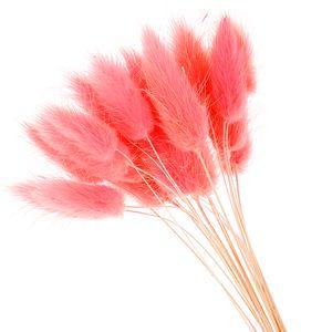 50 pcs flores secas naturais flores artificiais brancas de pelúcia colorido cauda de coelho falso grama foxtail buquê cachos longos flor artificial