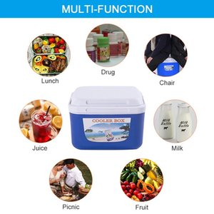 5L Mini Dual Use Car Refrigerator Home Freezer Thermal Heat Preservation And Cold Icebox for Picnics Travel Camping Cooler Box