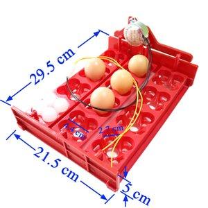 12 Яйца / 48 Птицы Яйца Инкубатор Turn яйца лоток 220V / 110V / 12V Мотор Куриные птицы Штриховка оборудование DIY Инкубатор принадлежности