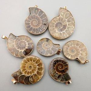 패션 자연 Ammonite 돌 달팽이 펜 던 트 목걸이 매력 6pcs 보석 만들기 Reliquiae 화석 목걸이 액세서리