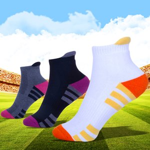 Womens Sports socks Comfortable Feeling Moisture Wicking Classic Sock perfect for Sports Daily and All Seasons Wearing