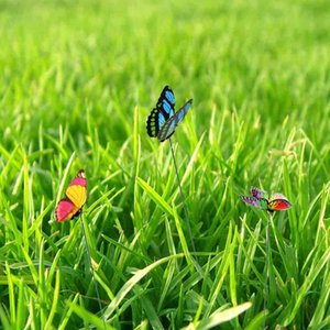 50 배 정원 마당 화분 다채로운 기발한 나비 스테이크 또는 레드 / 블루 / 그린 / 옐로우 잠자리 말뚝 분재 꽃 침대 냄비 장식
