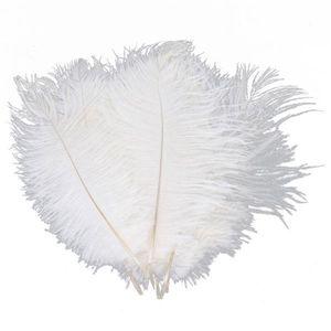 10 unids Blanco pluma de avestruz pluma 20-25 cm para la boda centro de mesa decoración de la boda decoración del partido fuente feative decoración