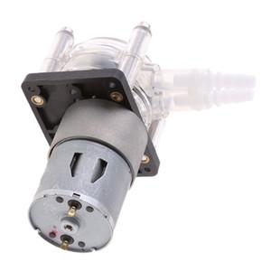 Freeshipping Peristaltic Pump Metering Corrosion Protection Vacuum Pump Suction Pump Silver 24V