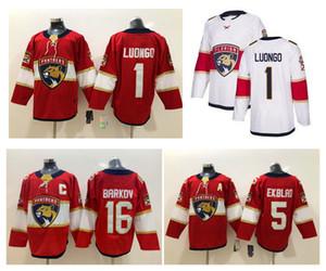 Florida Panthers Jersey 72 Sergei Bobrovsky 1 Roberto Luongo 16 Aleksander Barkov 5 Aaron Ekblad Red White Steins Hockey Jersey