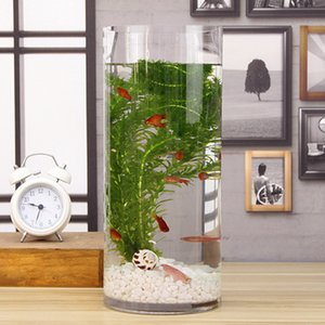 Flat Mouth Clear Mini Desktop Glass Fish Tank Aquarium Bowl Decoration