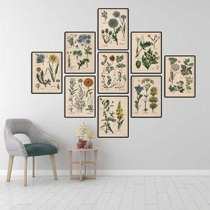 Collezione botanica Vintage Poster e Stampe Erbe 1898s lingua russa arte della parete di quadri su tela pittura decorazione domestica parete