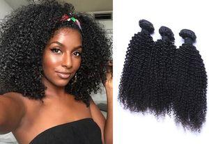 Malaysain Kinky Curl 100% İşlenmemiş İnsan Virgin Saç Örgüleri Remy İnsan Saç Uzantıları Boyanabilir 3 paketler