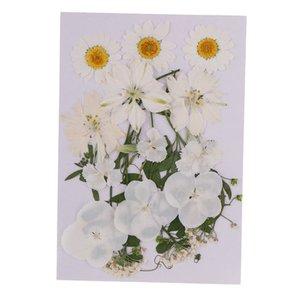 2-3.5cm multiples Mix Fleurs naturelles et feuilles Feuilles Pressed fleurs séchées pour la fabrication du savon à la main bijoux bricolage Décorations