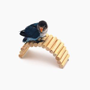 Totoro Squirrel Toys Branch Rainbow Hide Oneself Nest Gold Wire Bear's Nest Arco Puente Pequeño favor y puesto Sb. En posición importante