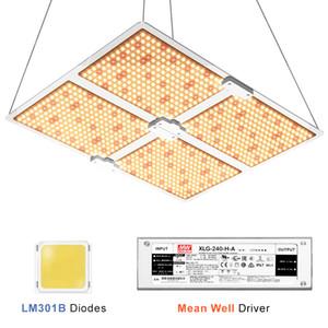 Vollspektrum Samsung LED-Licht 1000W / 2000W / 4000W Quanten Board wachsen mit LM301B 234Pcs 3000K Chips und UL-Treiber Meanwell