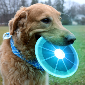 LED الصحن الطائر القط الكلب لعبة الكلب لعبة الطائر أقراص مقاومة مضغ جرو التدريب التفاعلي الحيوانات الأليفة Supplies100pcs T1I1945
