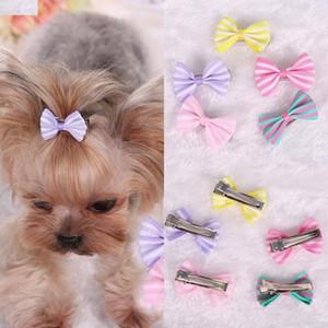 Dog Bows cheveux Pincer pour animaux Chat chiot toilettage rayé bowknot clip Yorkshire Teddy Hairpin Rose Violet Jaune Longueur 3.5cm