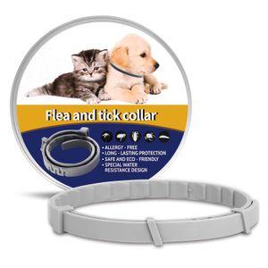 Pet mosquito Cat colar repelente e cão desparasitação colar Além de pulgas pet colarinho local pet cão acessórios