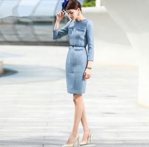 Desgaste delgado Primavera Otoño Invierno vestido de las mujeres traje de las mujeres de negocios formal Oficina de Trabajo Ropa de Señora Vestido lápiz de la vendimia