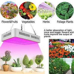 1000w 1200w 1800W 2000W led grow light Recommeded High Cost-effective Double Chips full spectrum led grow lights for Hydroponic Systems