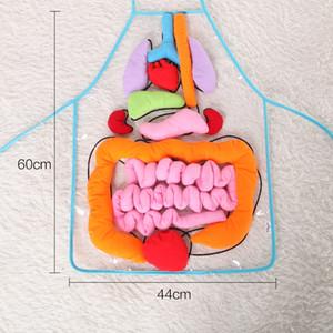 Kinderschürze Sleeveless Kindergarten-menschlicher Körper, der mit Plüschtier-Schutzblechen unterrichtet, verkaufen gut vorzüglich mit überlegener Qualität 42ws J1