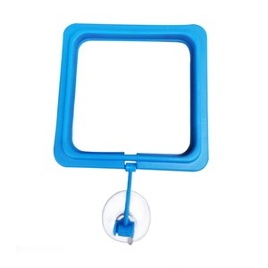 Lightweight Fish Tank Floating Home Durable With Suction Cup Portable DIY Aquarium Square Round Feeding Ring