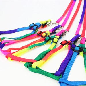 Nylon Rainbow Pet Leashes com Collar / Arnês Juntos Pet Dog Cat Leashes Leva 10 jogos / lote Atacado