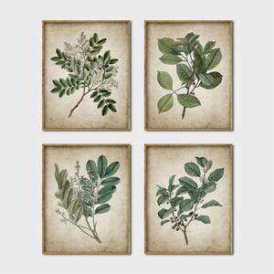 ainting Calligraphie Green Plant Wall Art Rétro Prints Affiche, art de cru de feuille Peinture Copie de toile botanique Décor Accrochage Ho ...