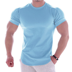 Wholesale Summer Polyester Dry Fit Interlock Pure Color Athletic Performance Men Muscle Fit T Shirt