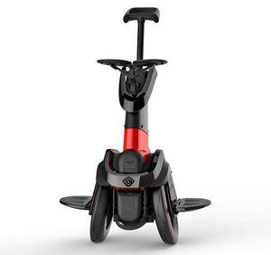 APP / 좌석을 가진 성인을위한 후륜 전기 상임 스쿠터 I-ROBOT-GO 600W * 2 48V 자동 균형 스쿠터