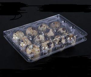 Wholwsale 12 отверстий Творческий перепелиное яйцо Контейнеры пластиковые яичные коробки D28mm / H39mm 1500pcs / серия Свободная перевозка груза SN4108