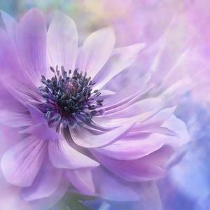 Beautiful Purple Flowers 5D DIY Diamond Painting Home Decoration Wall Painting of Diamond Mosaic Embroidery Painting