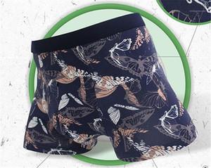 Calças curtas Moda respirável Estilo Homme Vestuário florais Imprimir Mens Desinger Cueca Moda Boxers Estrela Imprimir