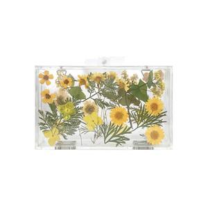 Tasarımcı-Kadınlar Akşam Çanta Çiçek Düğün İnci Çiçeği Gelin Çanta Crossbody Temizle Sert Kutu Debriyaj Şeffaf Zinciri Çanta Y19051702