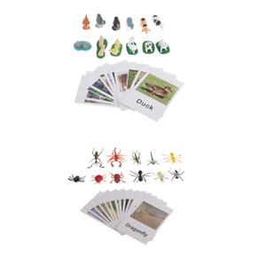 Montessori Animal Partita - 12pcs miniatura Insetti 12pcs La fattoria degli animali figurine con corrispondenti schede - giocattolo di apprendimento per i più piccoli in età prescolare
