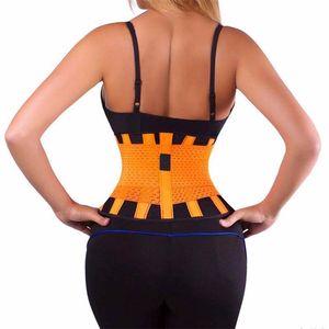 Nueva rejilla de la cintura Trainer cinturón lumbar eléctrico gimnasia Accesorios Deportes Hombres Mujeres original Power Fitness Cinturón de 7 colores para eligen