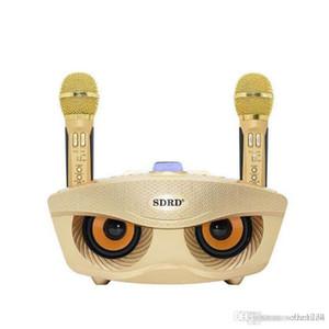لاسلكي جديد صوت مبدل ميكروفون المتحدث في الهواء الطلق المحمولة البومة الهاتف بلوتوث Karaok الأسرة KTV DHL