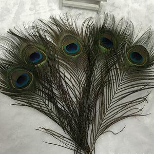 Pluma de pavo real natural 25-30 cm Suministros de decoración para el banquete de boda en casa Pluma de cola de pavo real Elegante Etapa Prop Pluma BH2152 ZX