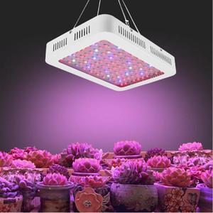 Planta Resalte LED crece la lámpara de control de la luz 1000W Full Spectrum Veg / Bloom para invernaderos, invernadero Agricultura