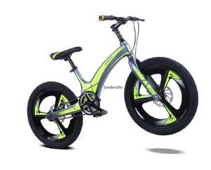 2020 Nova Crianças de bicicleta em liga de magnésio de 20 polegadas Montanha Student Veículo disco de freio de velocidade única Criança Bicicleta
