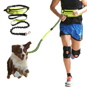 FREE Shipping Dog Leash Running Nylon Hand Freely Pet Products Dogs Harness Collar Jogging Lead Adjustable Waist Leashes Traction Belt Rope
