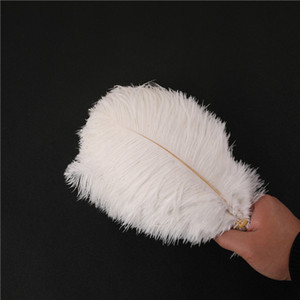 100 pcs Natural 10-12 inch (25-30 cm) Ostrich Feathers DIY Craft Plume Wedding Party Centerpieces Home Decoration