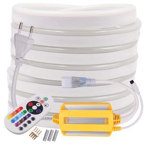 플렉스 RGB 네온 스트립 LED 조명 원격 제어 220V 240V AC 5050 로프 빛 방수 유연한 LED 테이프 홈 장식 문자열