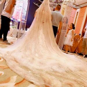 Вуаль Vintage Champagne Gold проблескового венчания невеста Luxury Veil Bling Bling Stars собор с вуалью Нового