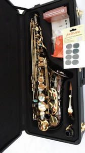 Fotografia Reale YANAGISAWA Sassofono contralto A-991 Chiave d'oro Professionale YANAGISAWA Super Play Bocchino Sax con custodia