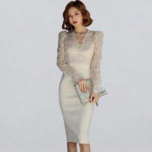 Elegante rappezzatura del merletto della guaina Vestito aderente Inverno donne sexy See Attraverso i vestiti dalla matita OL Work Wear Vestiti