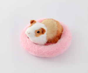 Mascota cama para dormir perro Soft Fleece Guinea Pig Bed Suministros para mascotas de invierno Pequeño animal Cage Mat Hamster Sleeping Bed 5colors