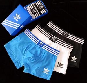 SY5 2020 Boxer para el hombre Underpanties atractiva de la ropa para hombre del modelo boxeadores ropa interior de algodón Pantalones cortos de pescado masculino calzoncillos 3pcs