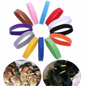 Inicio Jardín Set Identification gato 12PCS / collar de perro ajustable Collar identificación del animal doméstico Marcos correa para el cuello para Gatos Perros del perrito para Mascotas