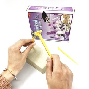 해적 보석 장난감 어린이 과학 교육이 지능 운영 능력 선물을 개발 파고 참신 고고학 발굴 모델