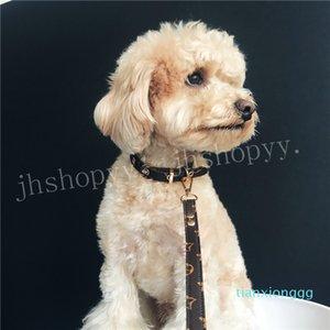 Jhshopyy corda piombo piccole e medie Cane Orsetto con un retrattile e Guinzaglio regolabile Dog Walker collare di cane personalizzati Tag