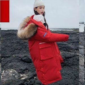 TYJTJY Mujeres Invierno 2019 Coats Nueva Versión coreana de la larga párrafo chaqueta abajo mujer del sombrero del invierno grueso algodón delgado de las mujeres