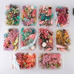 1 Box real secas plantas Flor seca por Aromatherapy Candle Epoxy Colar Pingente de Resina fazer jóias Artesanato DIY Acessórios